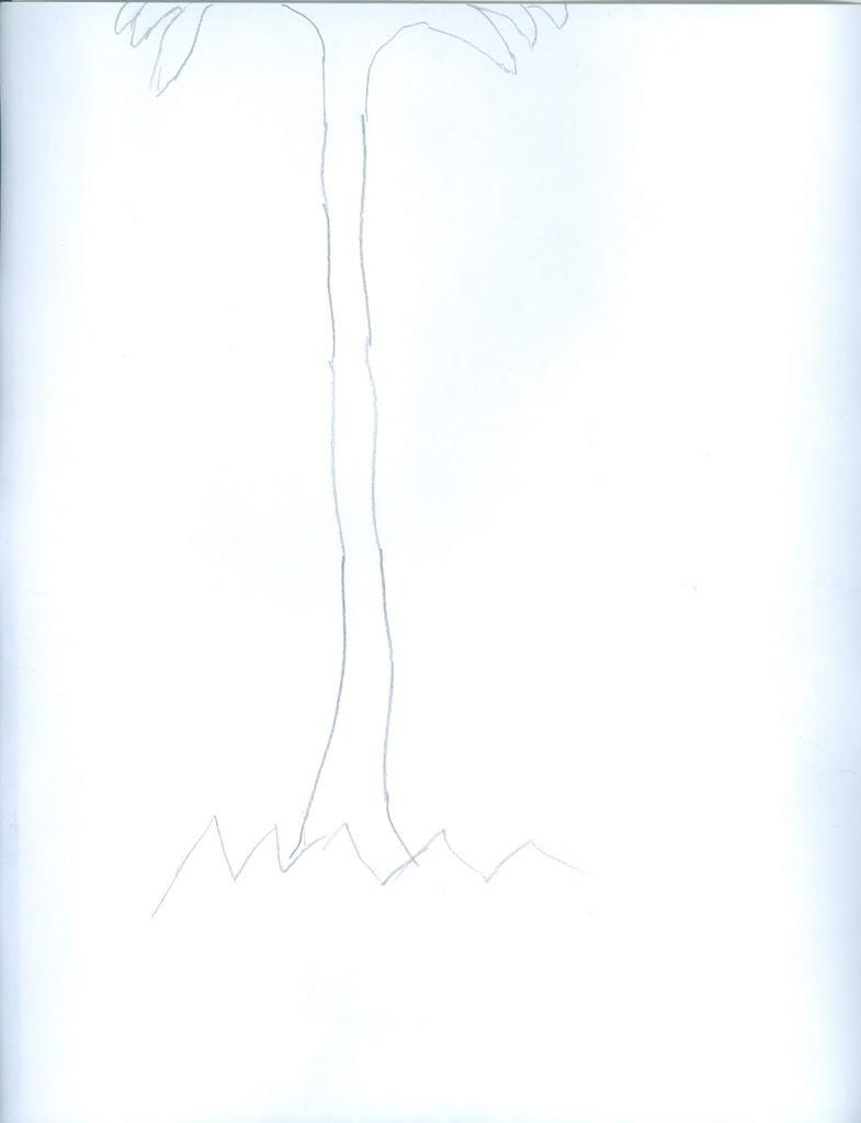 palma sola, dibujo de Ángel Gustavo Rivas para este blog